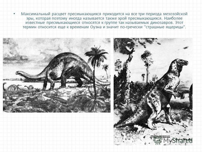 Максимальный расцвет пресмыкающихся приходится на все три периода мезозойской эры, которая поэтому иногда называется также эрой пресмыкающихся. Наиболее известные пресмыкающиеся относятся к группе так называемых динозавров. Этот термин относится еще