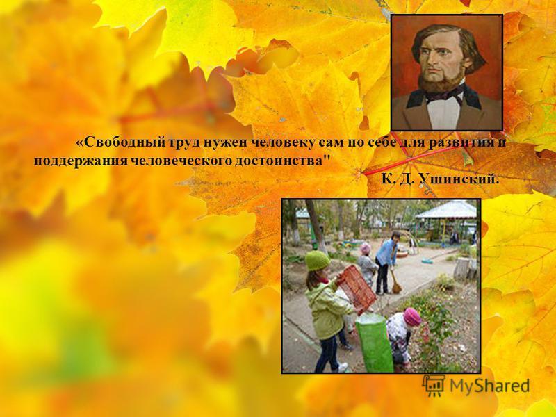 «Свободный труд нужен человеку сам по себе для развития и поддержания человеческого достоинства К. Д. Ушинский.