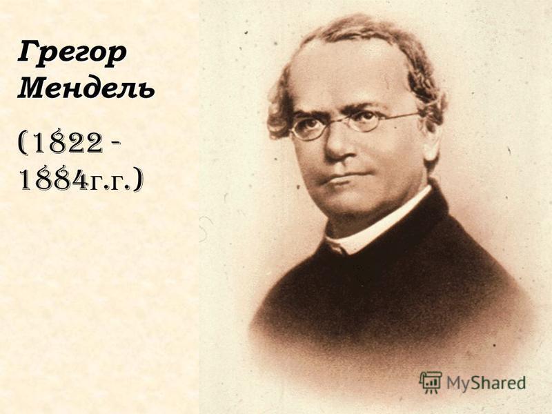 Грегор Мендель (1822 - 1884 г. г.)