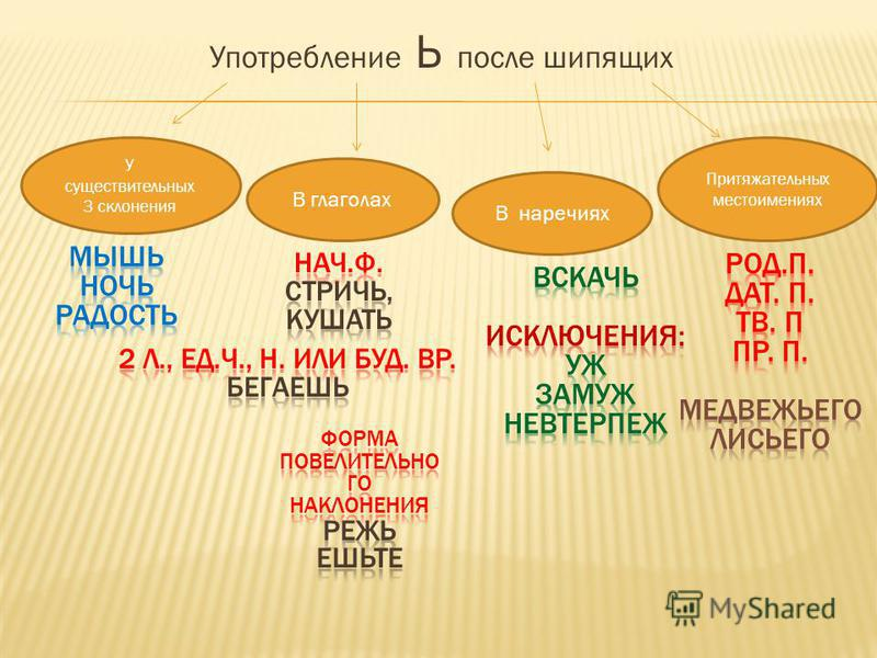 Употребление Ь после шипящих У существительных 3 склонения В глаголах В наречиях Притяжательных местоимениях