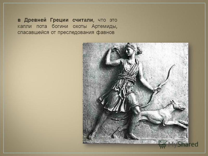в Древней Греции считали, что это капли пота богини охоты Артемиды, спасавшейся от преследования фавнов