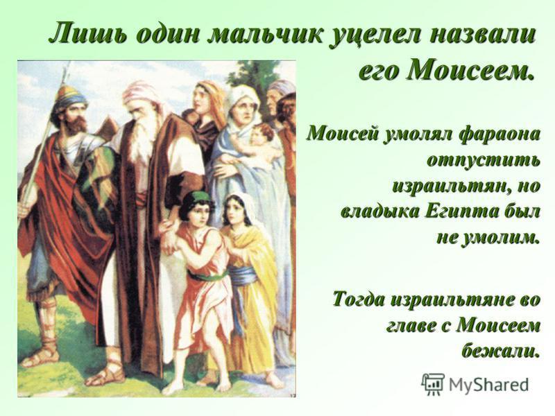 Лишь один мальчик уцелел назвали его Моисеем. Моисей умолял фараона отпустить израильтян, но владыка Египта был не умолим. Тогда израильтяне во главе с Моисеем бежали.
