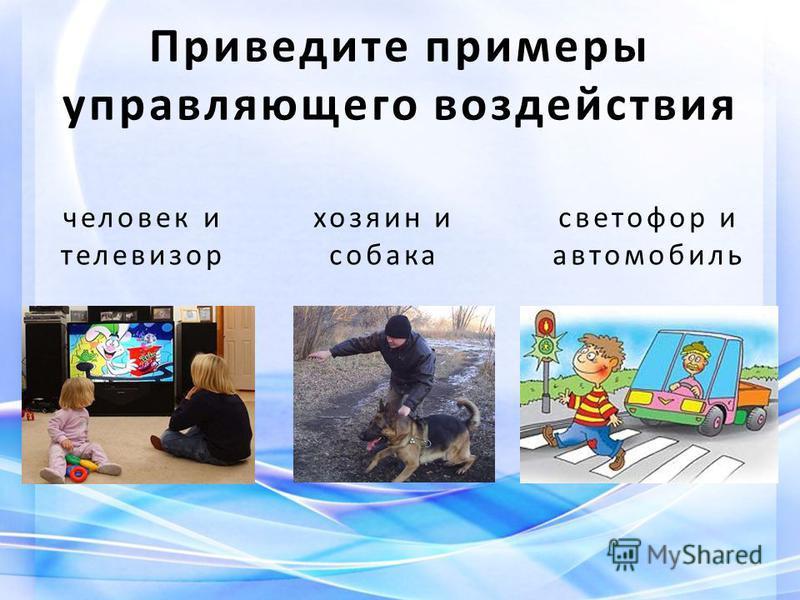 человек и телевизор хозяин и собака светофор и автомобиль Приведите примеры управляющего воздействия