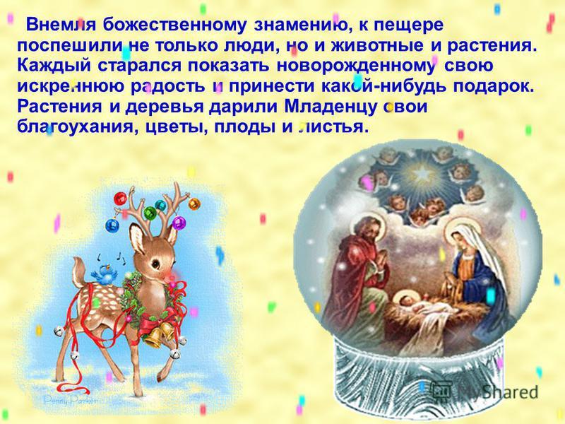 Согласно старинной легенде, ель стала символом Рождества по желанию небесных сил. Когда в Вифлееме, в убогой пещере, родился Спаситель, под пение ангелов на темном небе зажглась новая яркая звезда.