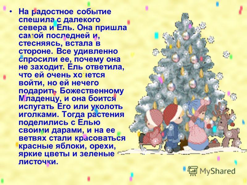 Внемля божественному знамению, к пещере поспешили не только люди, но и животные и растения. Каждый старался показать новорожденному свою искреннюю радость и принести какой-нибудь подарок. Растения и деревья дарили Младенцу свои благоухания, цветы, пл