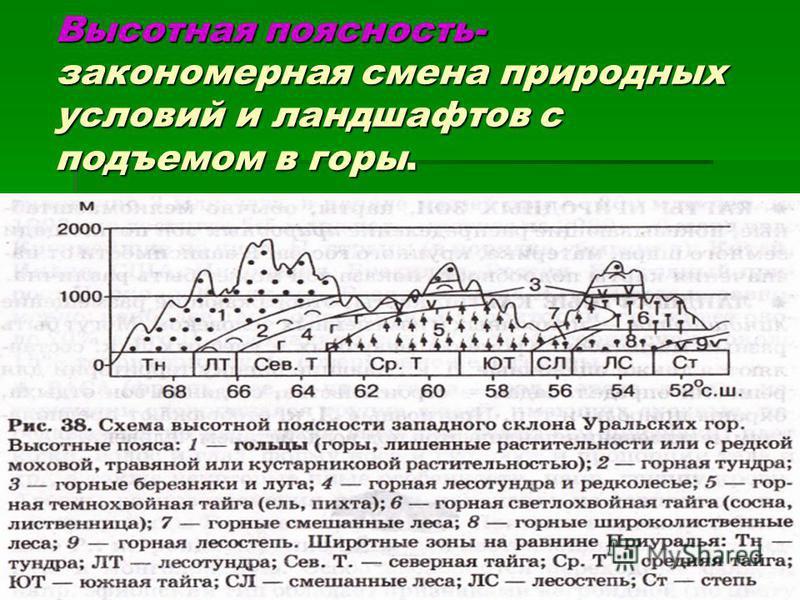 Высотная поясность- закономерная смена природных условий и ландшафтов с подъемом в горы.