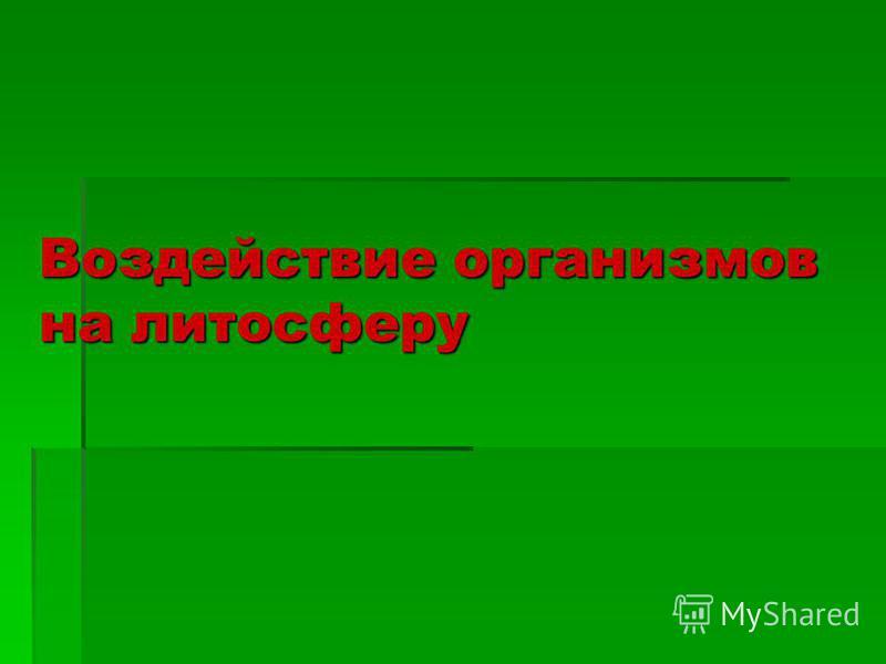 Воздействие организмов на литосферу