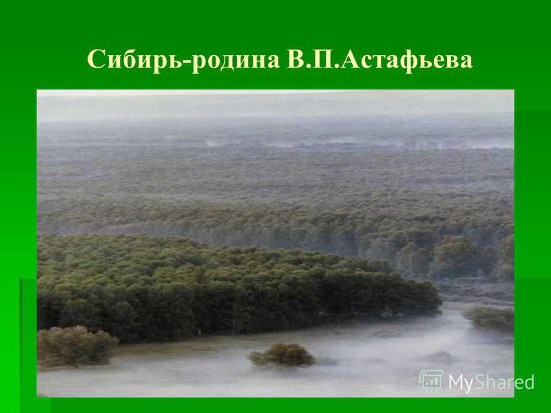 Сибирь-родина В.П.Астафьева