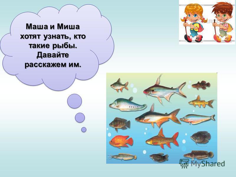 Маша и Миша хотят узнать, кто такие рыбы. Давайте расскажем им.