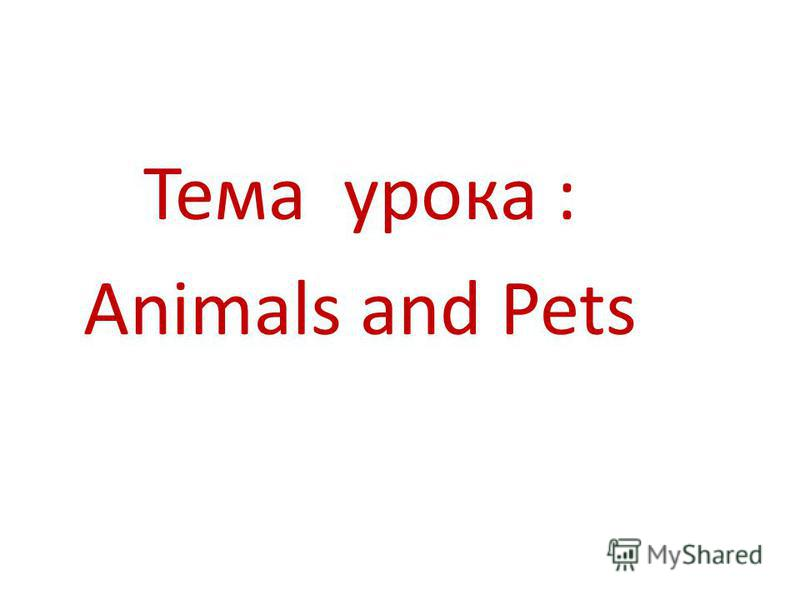Тема урока : Animals and Pets