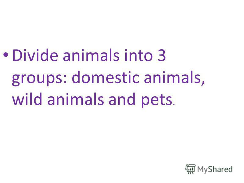 Divide animals into 3 groups: domestic animals, wild animals and pets.