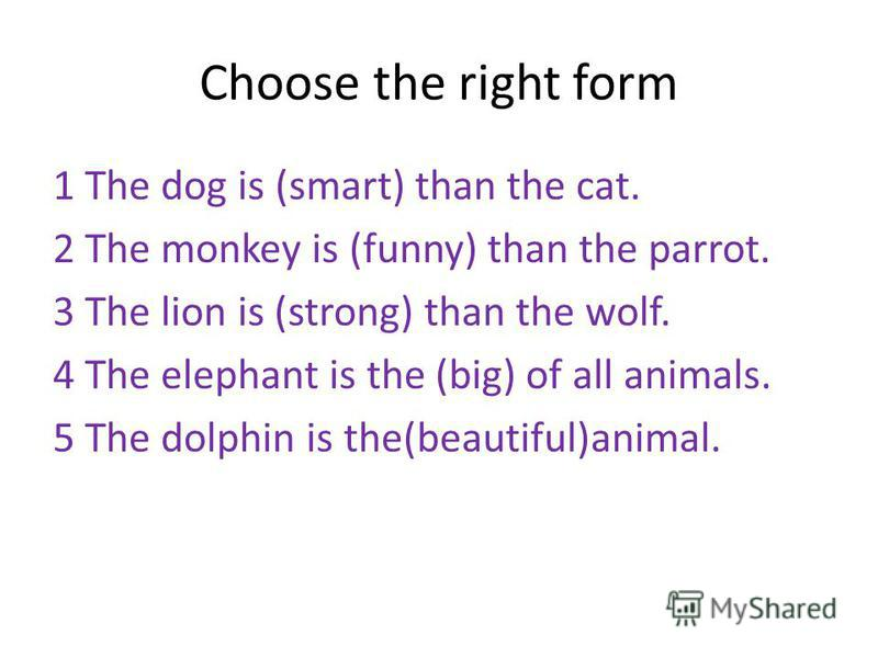 Choose the right form 1 The dog is (smart) than the cat. 2 The monkey is (funny) than the parrot. 3 The lion is (strong) than the wolf. 4 The elephant is the (big) of all animals. 5 The dolphin is the(beautiful)animal.