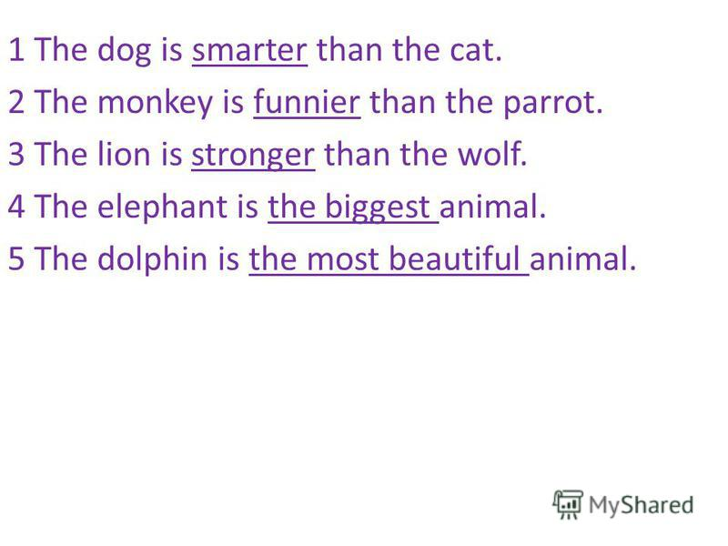 1 The dog is smarter than the cat. 2 The monkey is funnier than the parrot. 3 The lion is stronger than the wolf. 4 The elephant is the biggest animal. 5 The dolphin is the most beautiful animal.