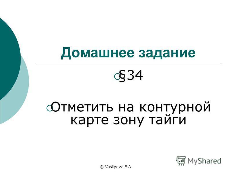 © Vasilyeva E.A. Домашнее задание §34 Отметить на контурной карте зону тайги