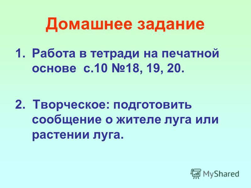 Домашнее задание 1. Работа в тетради на печатной основе с.10 18, 19, 20. 2. Творческое: подготовить сообщение о жителе луга или растении луга.