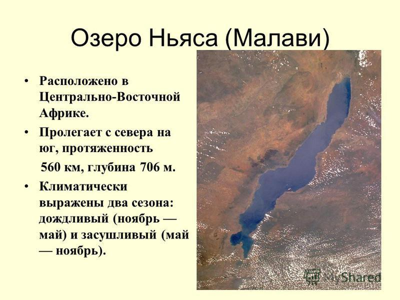 Озеро Ньяса (Малави) Расположено в Центрально-Восточной Африке. Пролегает с севера на юг, протяженность 560 км, глубина 706 м. Климатически выражены два сезона: дождливый (ноябрь май) и засушливый (май ноябрь).