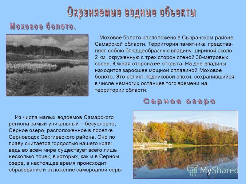 Моховое болото расположено в Сызранском районе Самарской области. Территория памятника представляет собою блюдцеобразную впадину шириной около 2 км, окруженную с трех сторон стеной 30-метровых сосен. Южная сторона ее открыта. На дне впадины находится