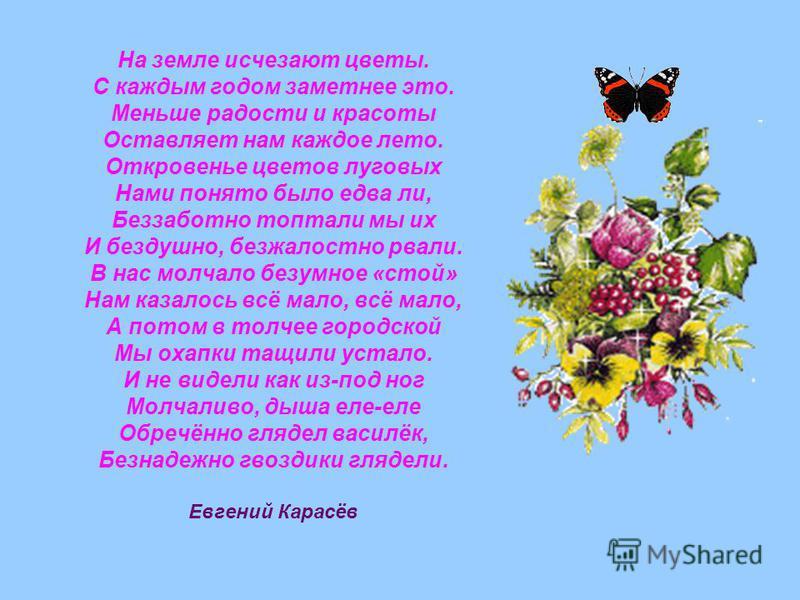 На земле исчезают цветы. С каждым годом заметнее это. Меньше радости и красоты Оставляет нам каждое лето. Откровенье цветов луговых Нами понято было едва ли, Беззаботно топтали мы их И бездушно, безжалостно рвали. В нас молчало безумное «стой» Нам ка
