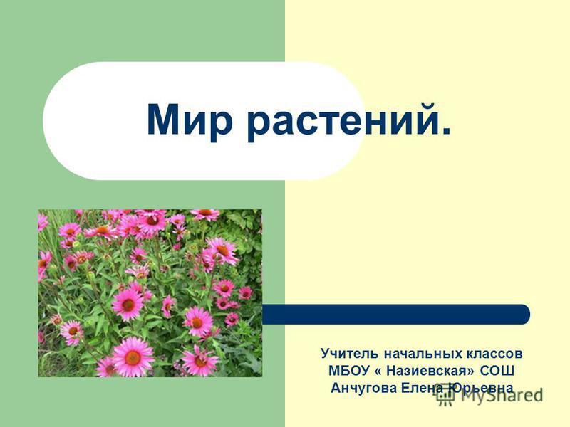 Мир растений. Учитель начальных классов МБОУ « Назиевская» СОШ Анчугова Елена Юрьевна