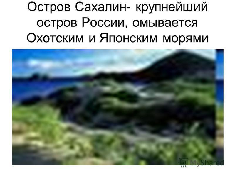 Остров Сахалин- крупнейший остров России, омывается Охотским и Японским морями