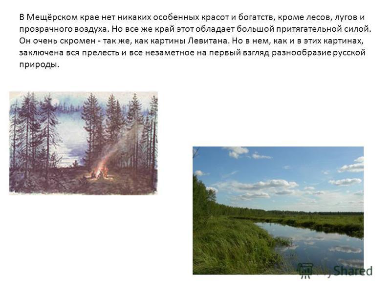 В Мещёрском крае нет никаких особенных красот и богатств, кроме лесов, лугов и прозрачного воздуха. Но все же край этот обладает большой притягательной силой. Он очень скромен - так же, как картины Левитана. Но в нем, как и в этих картинах, заключена