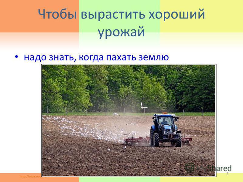 Чтобы вырастить хороший урожай надо знать, когда пахать землю 6