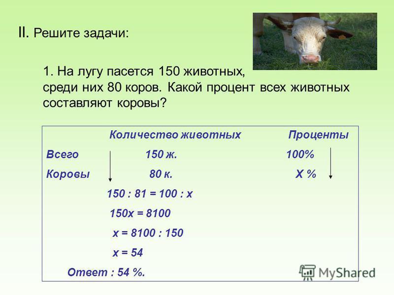 II. Решите задачи: 1. На лугу пасется 150 животных, среди них 80 коров. Какой процент всех животных составляют коровы? Количество животных Проценты Всего 150 ж. 100% Коровы 80 к. Х % 150 : 81 = 100 : х 150 х = 8100 х = 8100 : 150 х = 54 Ответ : 54 %.