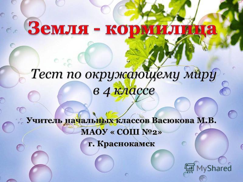 Тест по окружающему миру в 4 классе Учитель начальных классов Васюкова М.В. МАОУ « СОШ 2» г. Краснокамск