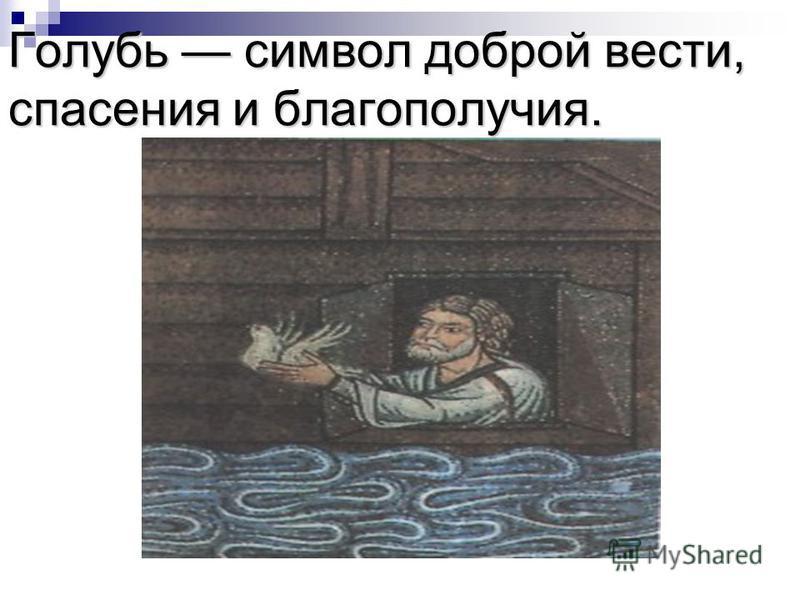 Потом Ной выпустил голубя, который, улетев, не мог найти пристанища, потому что вода была еще на поверхности всей земли, и возвратился обратно в ковчег. Подождав ещё семь дней, Ной снова выпустил голубя из ковчега. На этот раз голубь возвратился уже