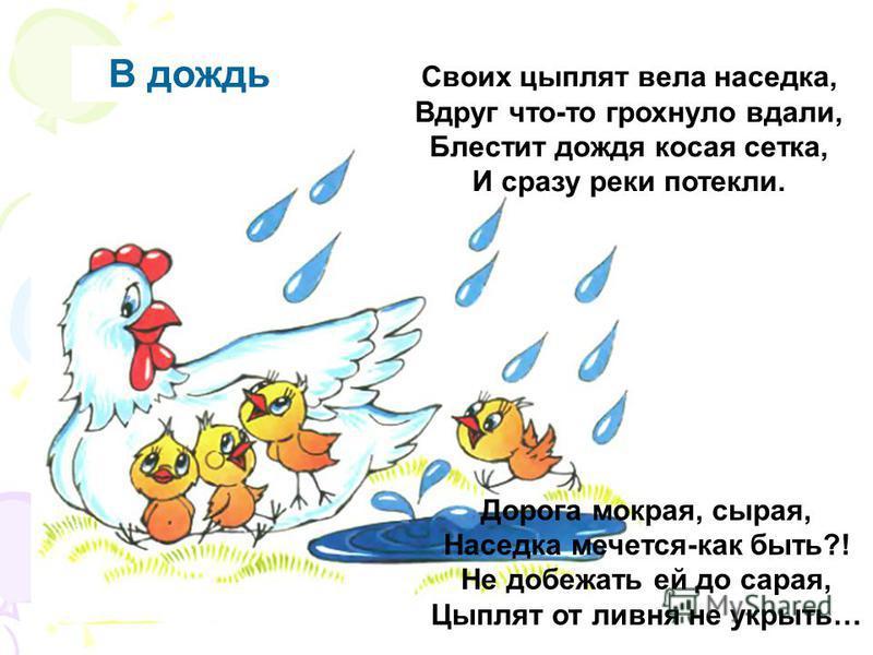 В дождь Своих цыплят вела наседка, Вдруг что-то грохнуло вдали, Блестит дождя косая сетка, И сразу реки потекли. Дорога мокрая, сырая, Наседка мечется-как быть?! Не добежать ей до сарая, Цыплят от ливня не укрыть…
