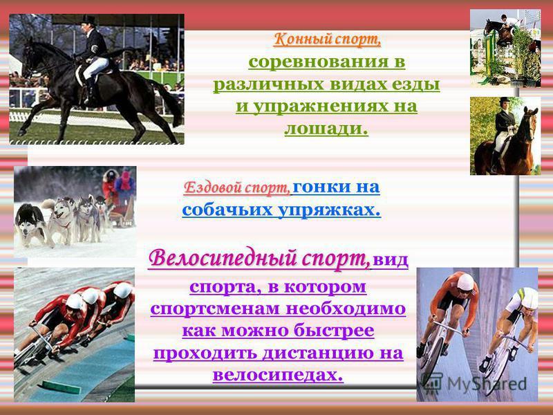Конный спорт, Конный спорт, соревнования в различных видах езды и упражнениях на лошади. Ездовой спорт, Ездовой спорт, гонки на собачьих упряжках. Велосипедный спорт, Велосипедный спорт, вид спорта, в котором спортсменам необходимо как можно быстрее