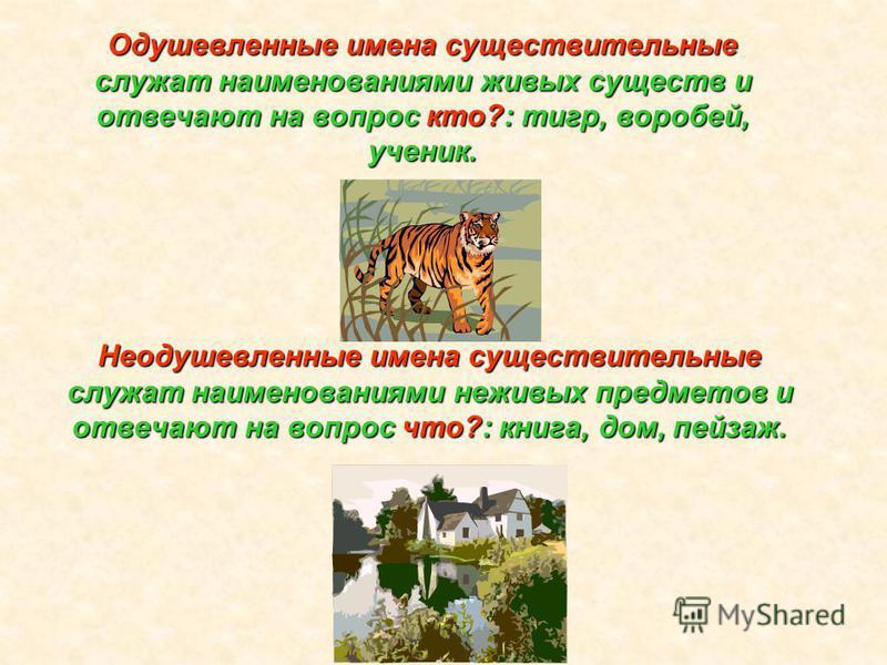 Одушевленные имена существительные служат наименованиями живых существ и отвечают на вопрос кто?: тигр, воробей, ученик. Неодушевленные имена существительные служат наименованиями неживых предметов и отвечают на вопрос что?: книга, дом, пейзаж.