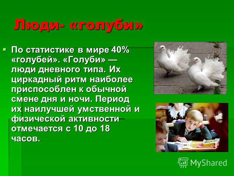 Люди- «голуби» По статистике в мире 40% «голубей». «Голуби» люди дневного типа. Их циркадный ритм наиболее приспособлен к обычной смене дня и ночи. Период их наилучшей умственной и физической активности отмечается с 10 до 18 часов. По статистике в ми