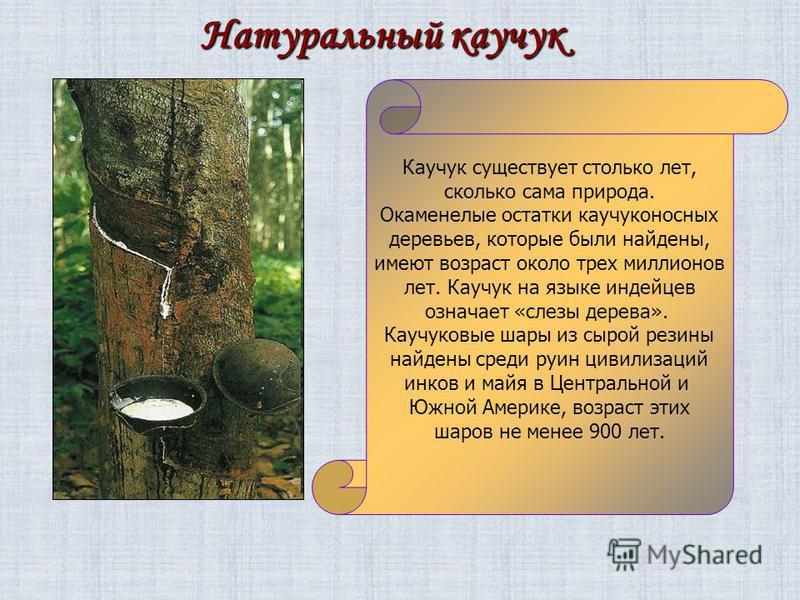 Натуральный каучук Каучук существует столько лет, сколько сама природа. Окаменелые остатки каучуконосных деревьев, которые были найдены, имеют возраст около трех миллионов лет. Каучук на языке индейцев означает «слезы дерева». Каучуковые шары из сыро