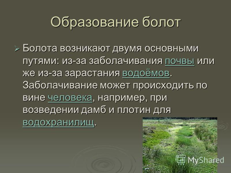 Образование болот Болота возникают двумя основными путями: из-за заболачивания почвы или же из-за зарастания водоёмов. Заболачивание может происходить по вине человека, например, при возведении дамб и плотин для водохранилищ. Болота возникают двумя о
