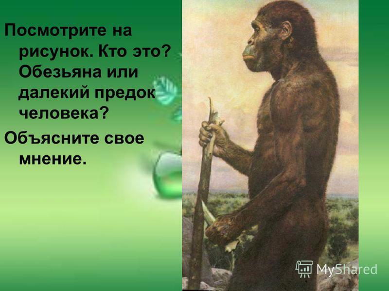 Посмотрите на рисунок. Кто это? Обезьяна или далекий предок человека? Объясните свое мнение.