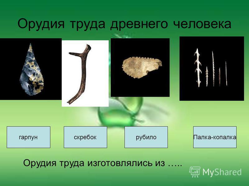 Орудия труда древнего человека гарпун Палка-копалкарубилоскребок Орудия труда изготовлялись из …..