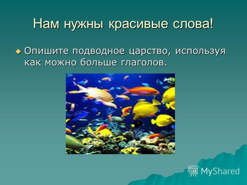 Нам нужны красивые слова! Опишите подводное царство, используя как можно больше глаголов. Опишите подводное царство, используя как можно больше глаголов.