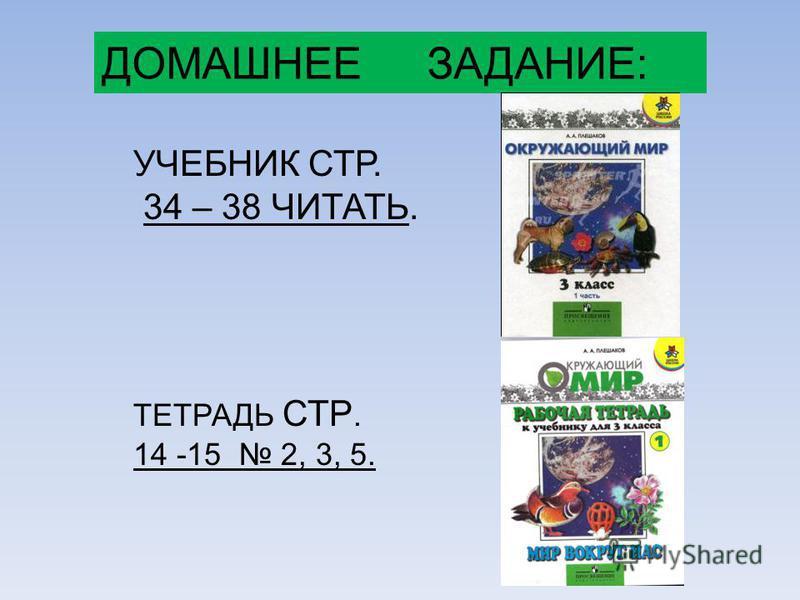 ДОМАШНЕЕ ЗАДАНИЕ: УЧЕБНИК СТР. 34 – 38 ЧИТАТЬ. ТЕТРАДЬ СТР. 14 -15 2, 3, 5.