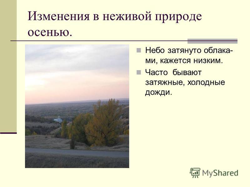 В ГОСТИ К ОСЕНИ