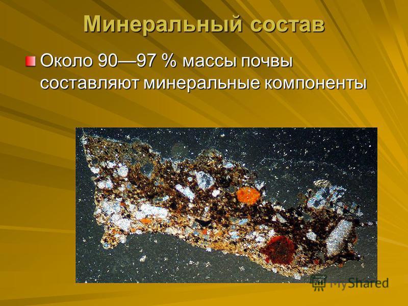 Минеральный состав Около 9097 % массы почвы составляют минеральные компоненты