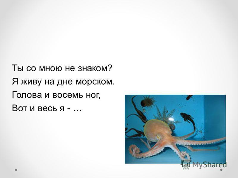 Ты со мною не знаком? Я живу на дне морском. Голова и восемь ног, Вот и весь я - …
