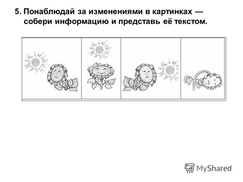 5. Понаблюдай за изменениями в картинках собери информацию и представь её текстом.