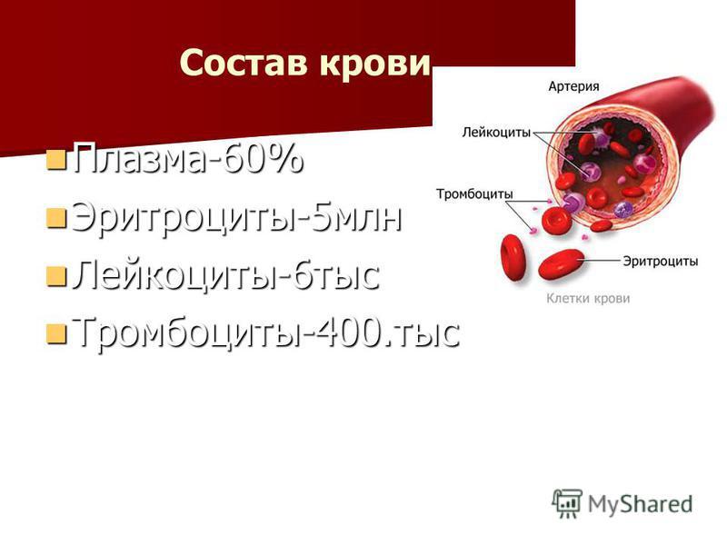 . Состав крови. Плазма-60% Плазма-60% Эритроциты-5 млн Эритроциты-5 млн Лейкоциты-6 тыс Лейкоциты-6 тыс Тромбоциты-400. тыс Тромбоциты-400.тыс