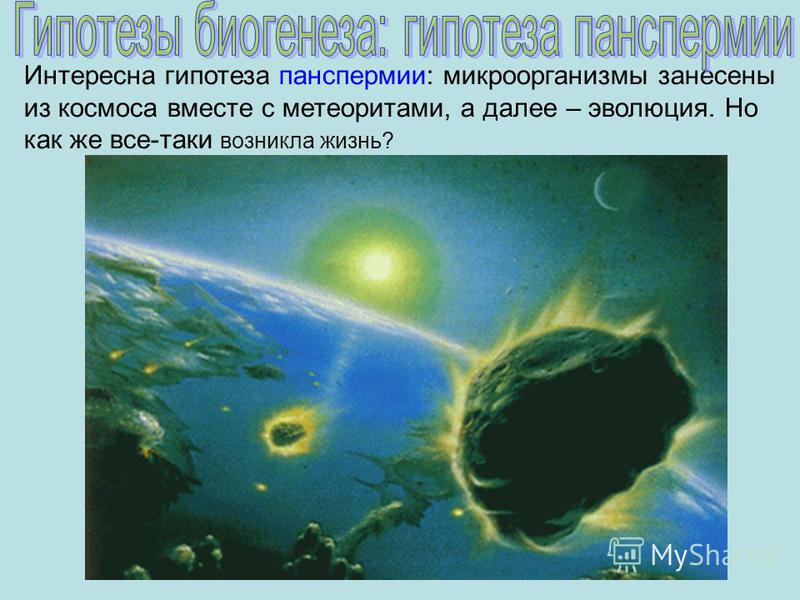 Интересна гипотеза панспермии: микроорганизмы занесены из космоса вместе с метеоритами, а далее – эволюция. Но как же все-таки возникла жизнь?