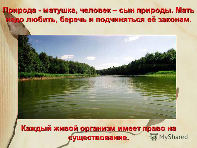 Природа - матушка, человек – сын природы. Мать надо любить, беречь и подчиняться её законам. Каждый живой организм имеет право на существование.