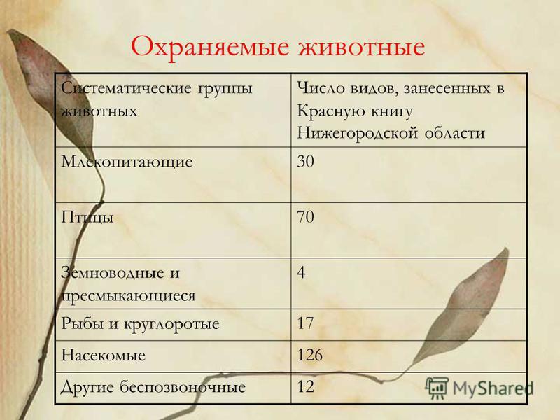 Охраняемые животные Систематические группы животных Число видов, занесенных в Красную книгу Нижегородской области Млекопитающие 30 Птицы 70 Земноводные и пресмыкающиеся 4 Рыбы и круглоротые 17 Насекомые 126 Другие беспозвоночные 12