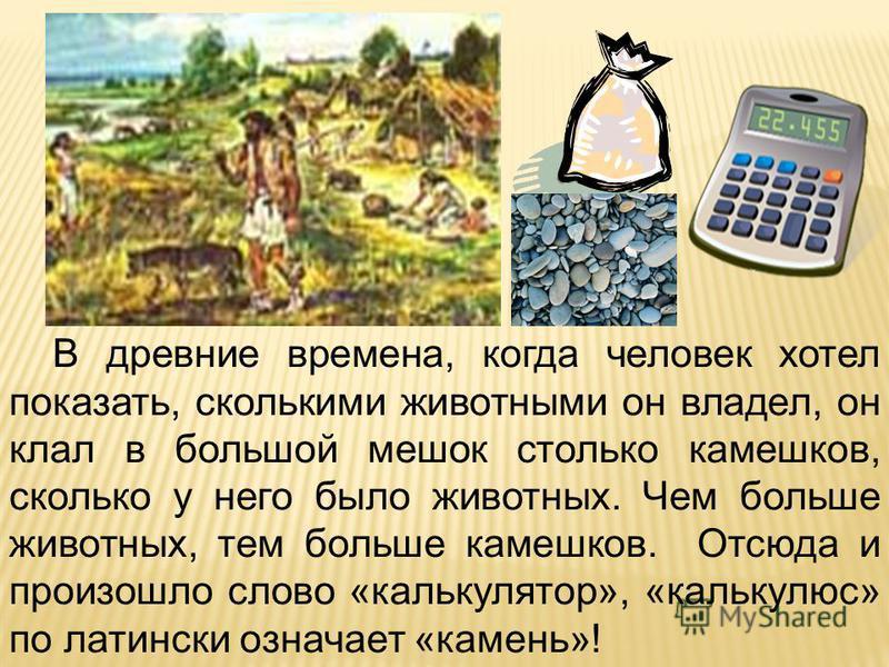 В древние времена, когда человек хотел показать, сколькими животными он владел, он клал в большой мешок столько камешков, сколько у него было животных. Чем больше животных, тем больше камешков. Отсюда и произошло слово «калькулятор», «калькулюс» по л