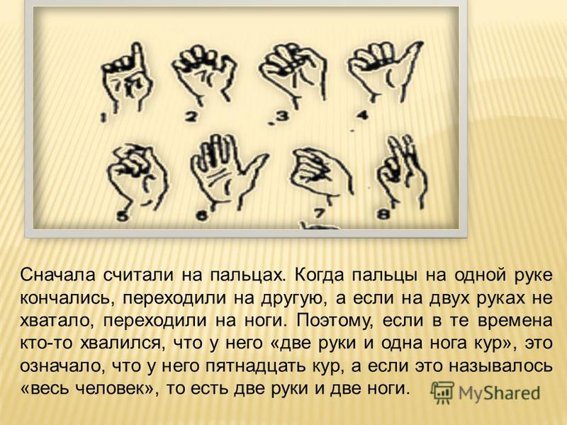 Сначала считали на пальцах. Когда пальцы на одной руке кончались, переходили на другую, а если на двух руках не хватало, переходили на ноги. Поэтому, если в те времена кто-то хвалился, что у него «две руки и одна нога кур», это означало, что у него п