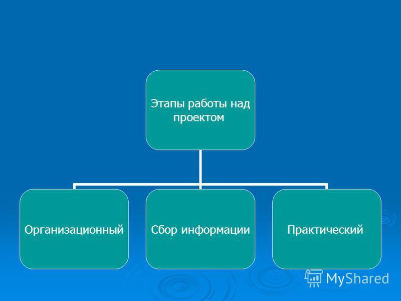 Этапы работы над проектом Организационный Сбор информации Практический